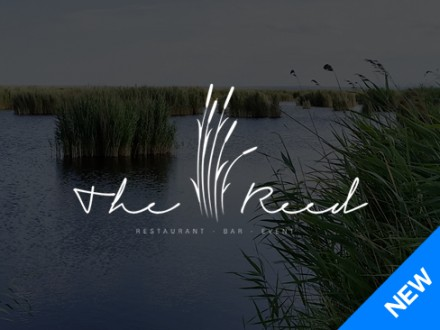 the_reed_new